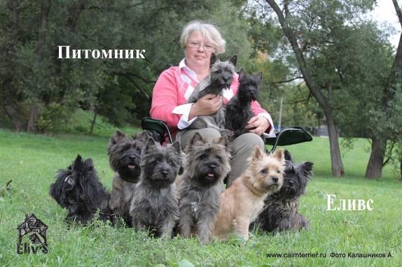 Фото владельца питомника Еливс Елены Сорокиной с Керн терьерами