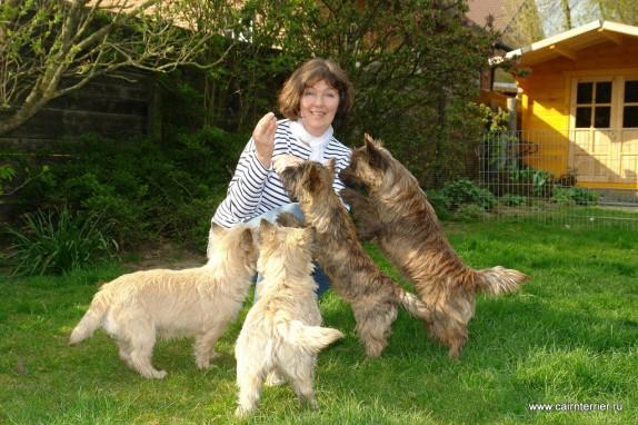 owner cairn terrier Glenmore`s