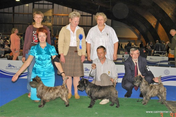 Cairn Terrier Gosha exhibition (2)