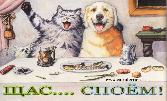 Картинка кошка и собака пируют за столом
