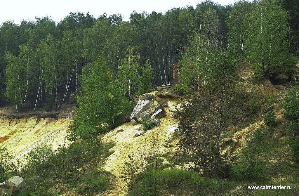 Пейзаж малого люберецкого карьера. Фото Алексея Калашникова.