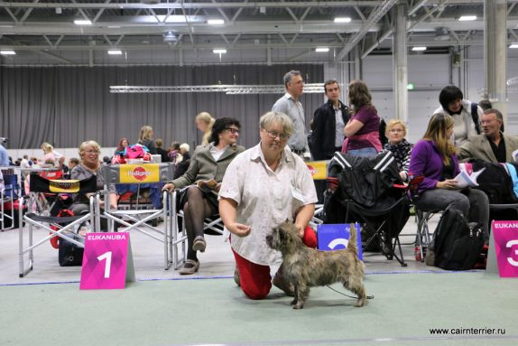 European Dog Show in Oslo