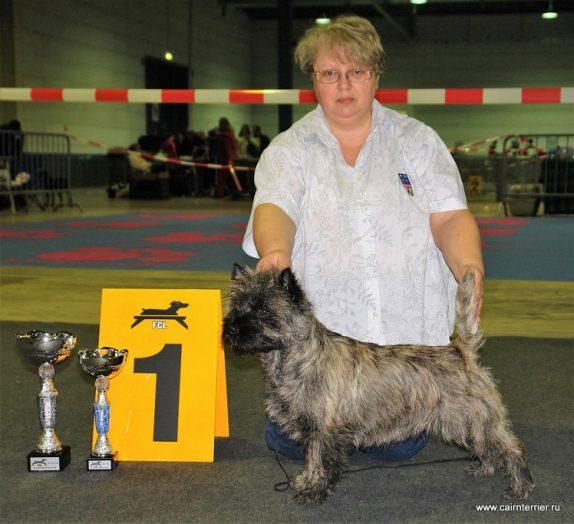 Керн терьер Понтус - Чемпион Люксенбурга.