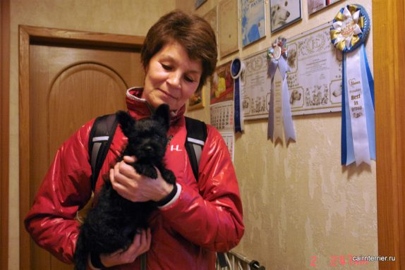 Фото владельца со щенком керн терьера питомника Еливс на руках