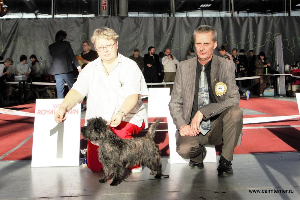 Фото сука керн терьера Эллика с заводчиком питомника Еливс и экспертом на призовом месте выставки