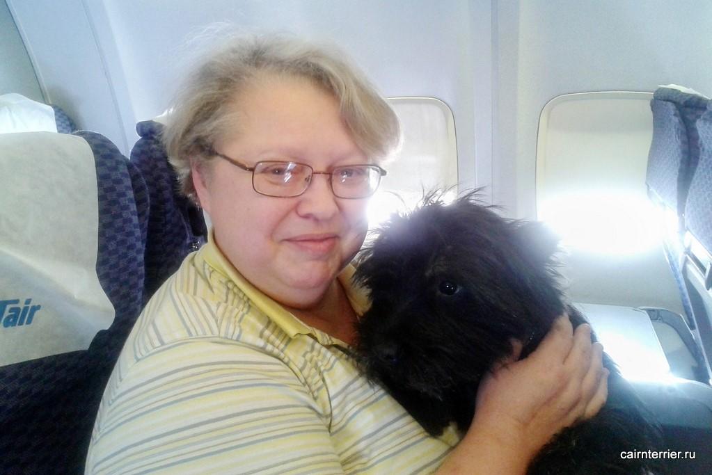 Елена с керн терьером в самолёте