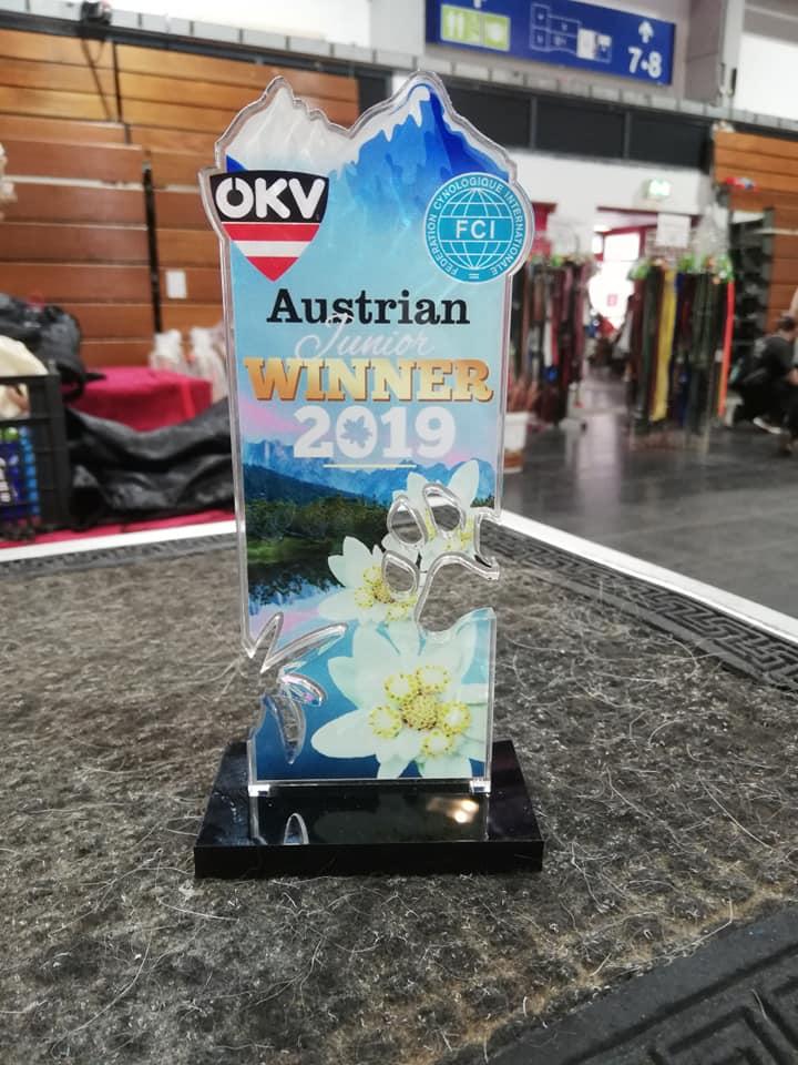 Победитель Австрии - Yental Iz Doma Elivs