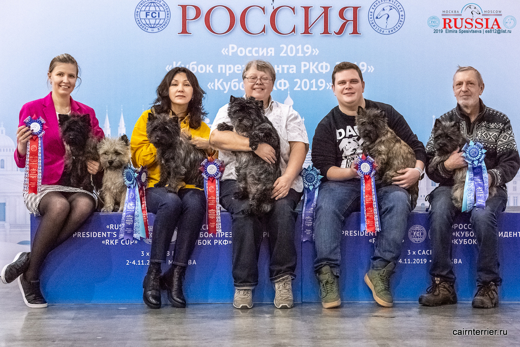 Керн терьеры питомника Еливс победители выставки Россия 2019