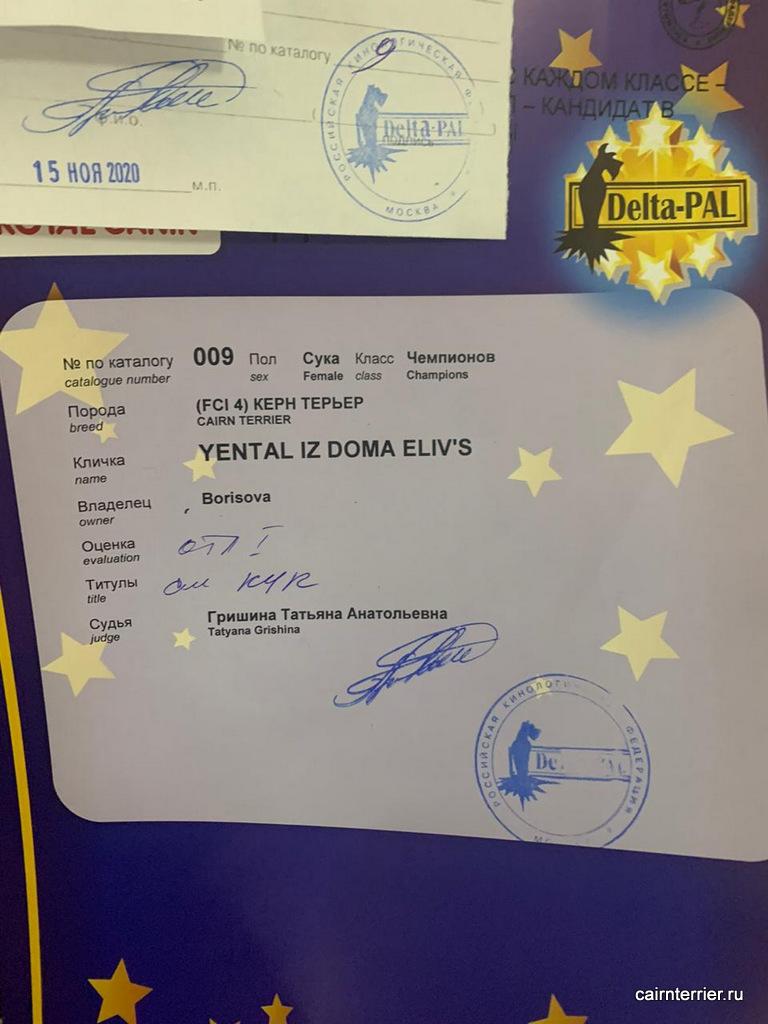 Описание YENTAL IZ DOMA ELIVS